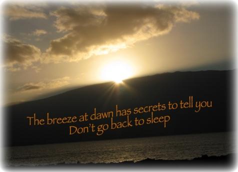 Breeze_at_dawn_Hawaii_sunrise.jpg